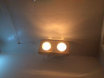Sưởi ấm bằng đèn hồng ngoại thế nào mới đúng? 1